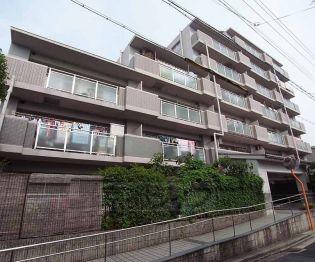 京都府京都市伏見区新中町の賃貸マンションの外観