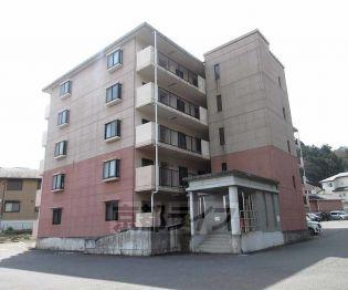 滋賀県大津市若葉台の賃貸マンション