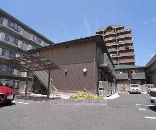 京都府京都市南区東九条西河辺町の賃貸アパート
