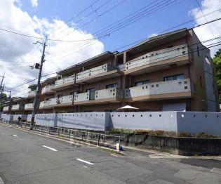 京都府京都市北区大宮一ノ井町の賃貸マンションの外観