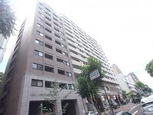 リーガル神戸中山手通り 5階の賃貸【兵庫県 / 神戸市中央区】