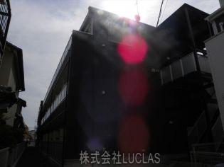神奈川県相模原市南区文京1丁目の賃貸マンション