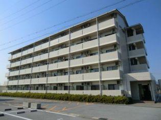 メゾン愛荘 3階の賃貸【滋賀県 / 愛知郡愛荘町】