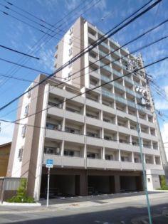 チェルトヴィータ 2階の賃貸【愛知県 / 名古屋市中区】