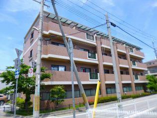 セレナ東甲子園 2階の賃貸【兵庫県 / 西宮市】