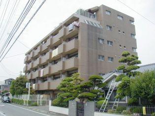 豊栄ビル[1階]