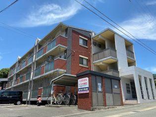福岡県宗像市石丸2丁目の賃貸マンション