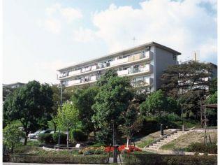 兵庫県宝塚市中山五月台5丁目の賃貸マンションの画像