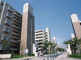 兵庫県伊丹市寺本4丁目の賃貸マンションの画像