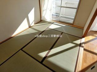 井吹東シティコートのきれいな和室です