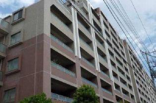 エムステージ・イースティア 7階の賃貸【東京都 / 江東区】