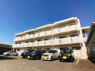 鹿児島県薩摩川内市大王町の賃貸マンションの外観