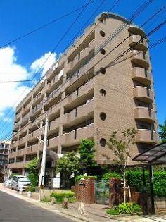 パラディ211 8階の賃貸【福岡県 / 福岡市博多区】