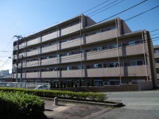 トレセリア大和田弐番館[0407号室]の外観