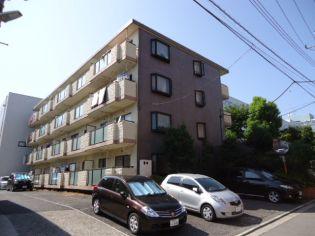 神奈川県横浜市緑区白山1丁目の賃貸マンション
