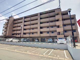 ジュネス自由ヶ丘 2階の賃貸【福岡県 / 宗像市】