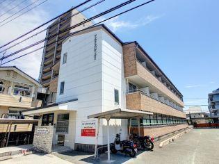 サンライズパティオⅡ 1階の賃貸【福岡県 / 宗像市】