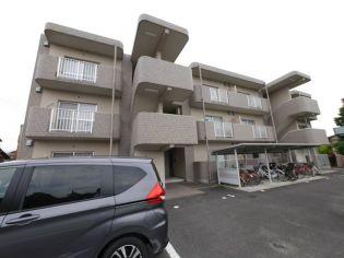 滋賀県甲賀市水口町虫生野の賃貸マンションの画像