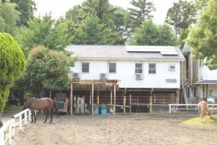 Horse Park(ホースパーク)S[1号室]
