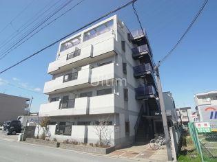 サンライフ 2階の賃貸【京都府 / 京都市伏見区】