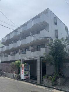 千葉県市川市福栄3丁目の賃貸マンション