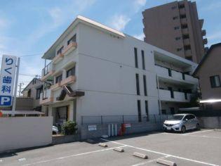 メゾンドルゥ 3階の賃貸【和歌山県 / 和歌山市】
