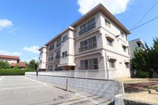 2DK・霞ヶ丘 徒歩9分・駐車場あり・即入居可の賃貸