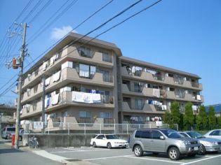 ロイヤルコーポ吉田 4階の賃貸【兵庫県 / 神戸市西区】