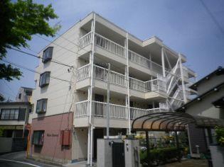 埼玉県坂戸市仲町の賃貸マンションの外観