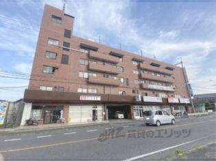 リコースクエアビル 5階の賃貸【滋賀県 / 大津市】