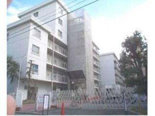 高野川ハイツ204[204号室]の外観
