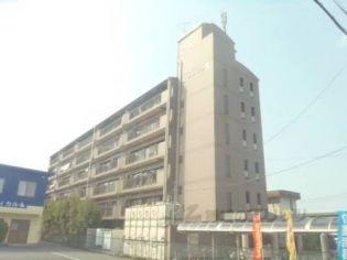 滋賀県守山市播磨田町の賃貸マンション