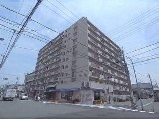 五条ローズハイツB棟706 7階の賃貸【京都府 / 京都市右京区】