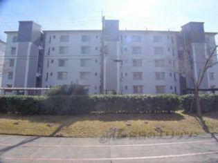 桃山南団地16号棟[303号室]の外観